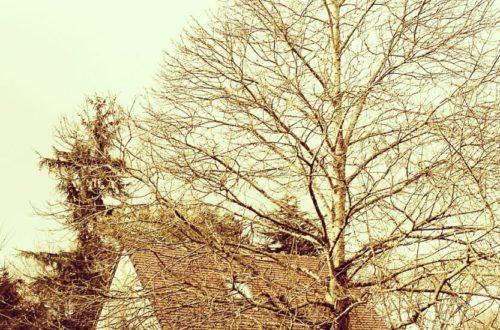 On est en hiver